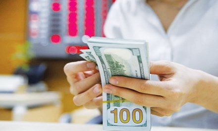 Gửi USD lãi suất 0%, ngân hàng cho vay 2,5 - 3%